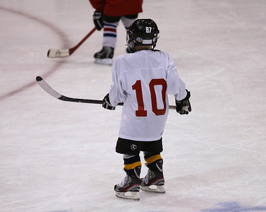 The little guys youth hockey